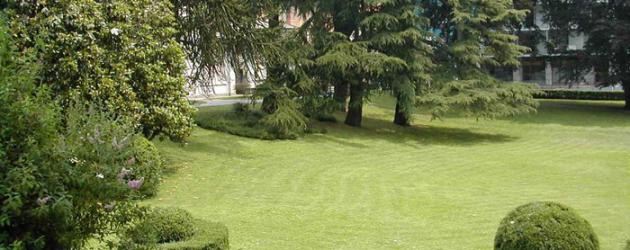 Realizzazione zona verde